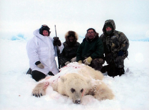 Bear-Hybrid-Photo