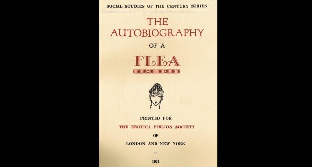 Autobiography of a flea part 1 4k remastered - 1 part 10