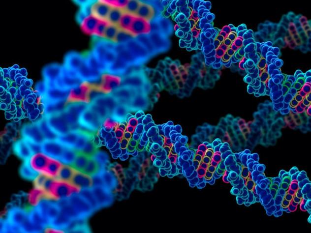 genes130723113749-large