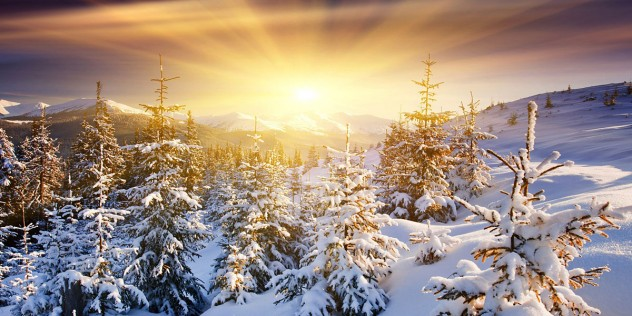 Winter-Sun-l