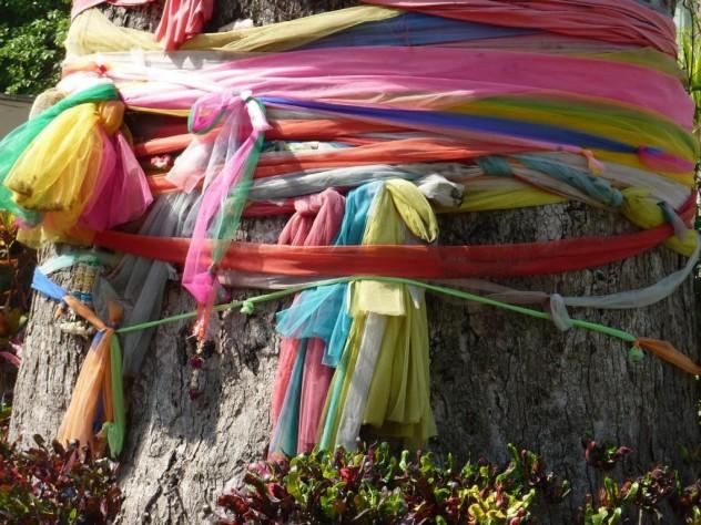 tree and ribbons