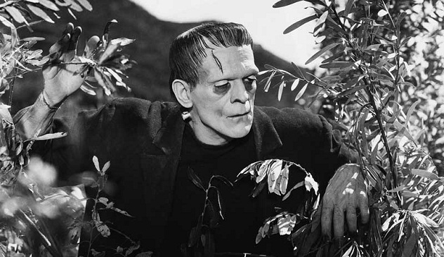 10 Things You Never Knew About Frankenstein's Monster ...