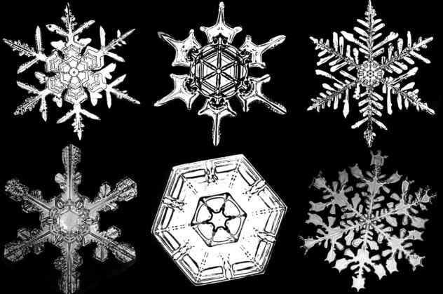 bentley_snowflakes_2