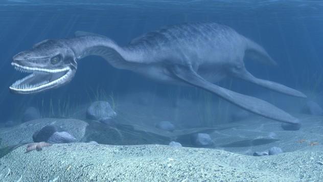 plesiosaurus_by_vukaddin-d4pwic9