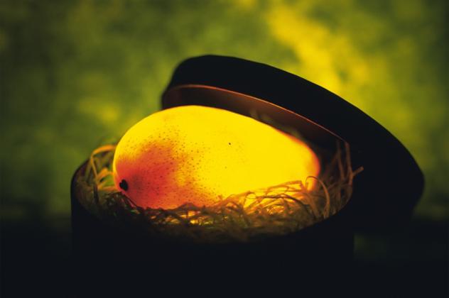 9- mango
