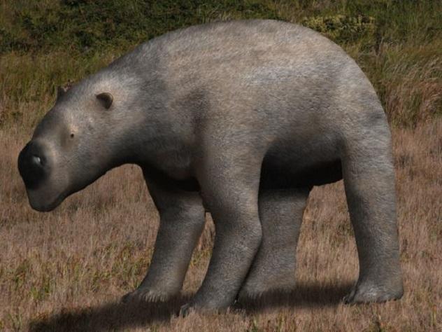 Diprotodon_BW2