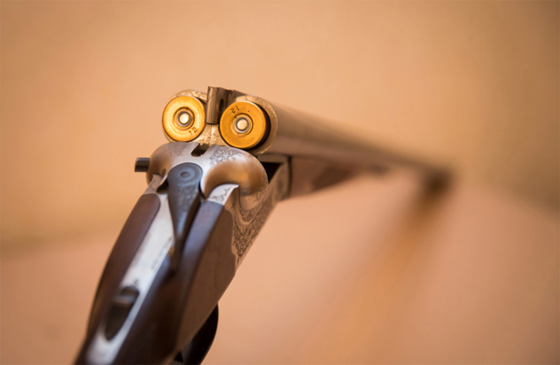 2- gun trick