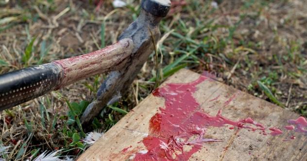 10 Contemporary Cases Of Human Sacrifice