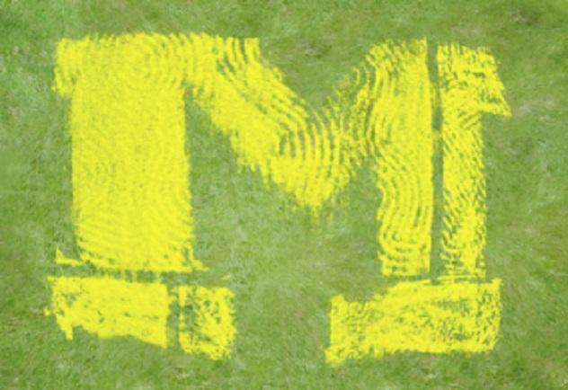186080646
