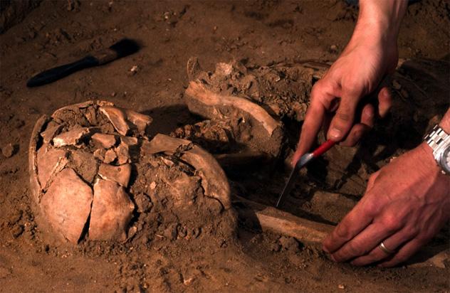 5- human remains