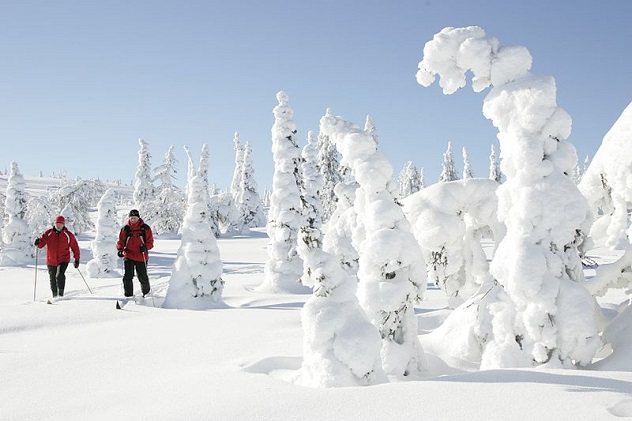 800px-Skiing_at_Riisitunturi_National_Park