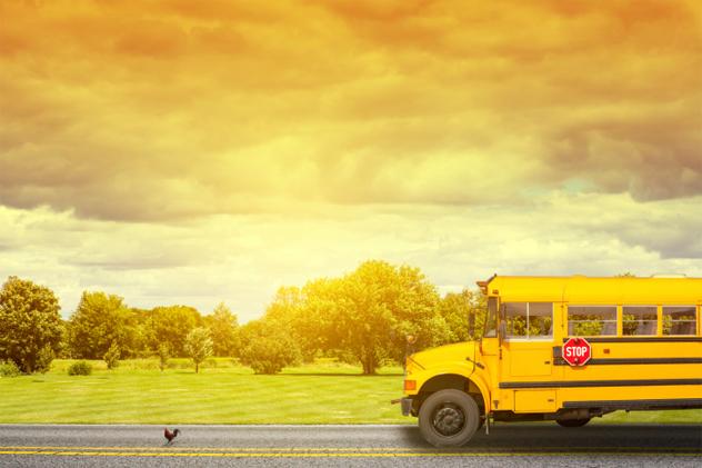 6- summer school
