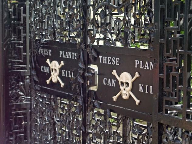 9 Poison garden