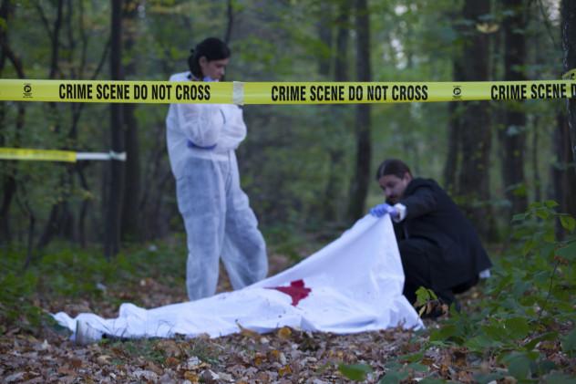 crime scene woods