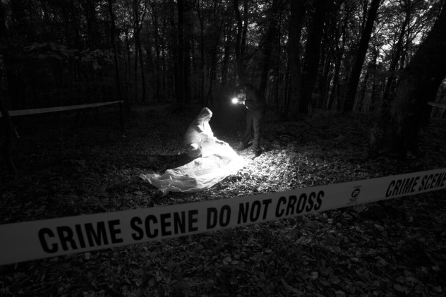 woods crime scene