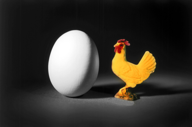 10 Surprisingly Interesting Facts About Chickens - Listverse