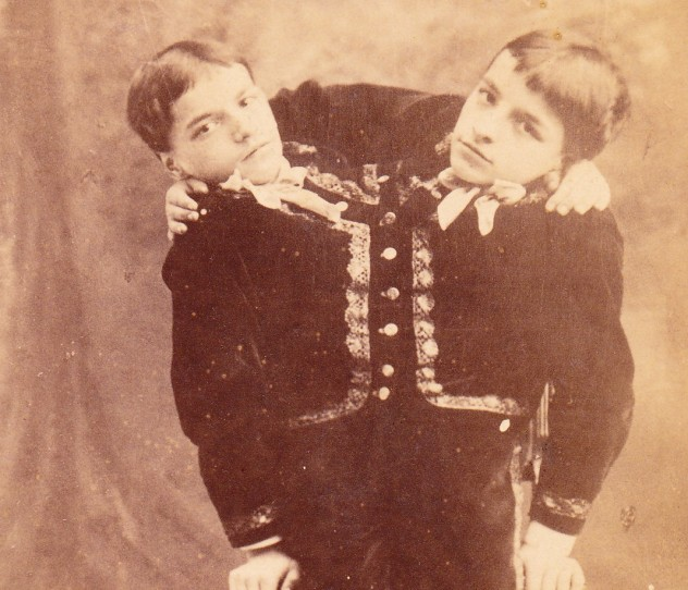 Tocci_Brothers crop