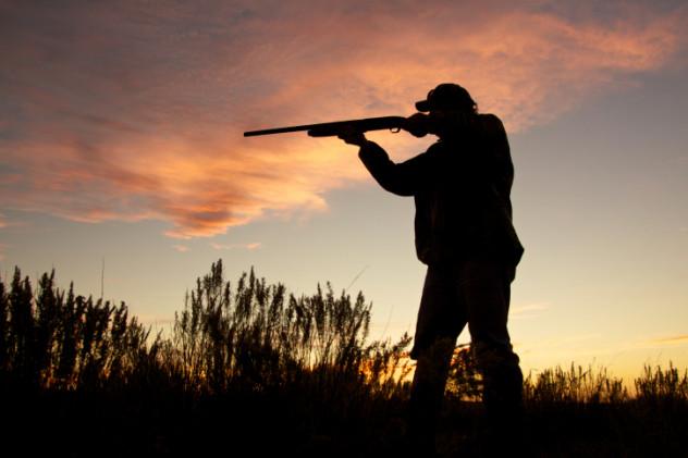 10 Hunting