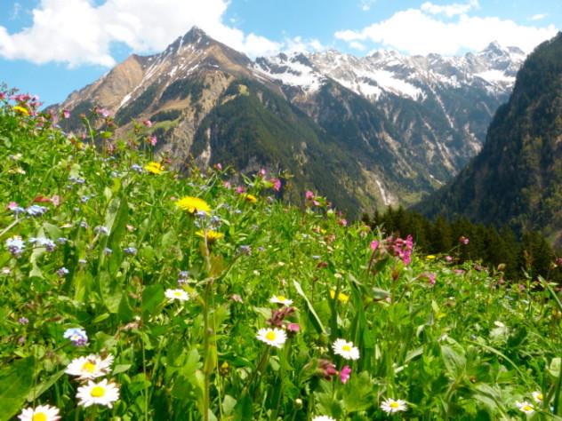4 Alps