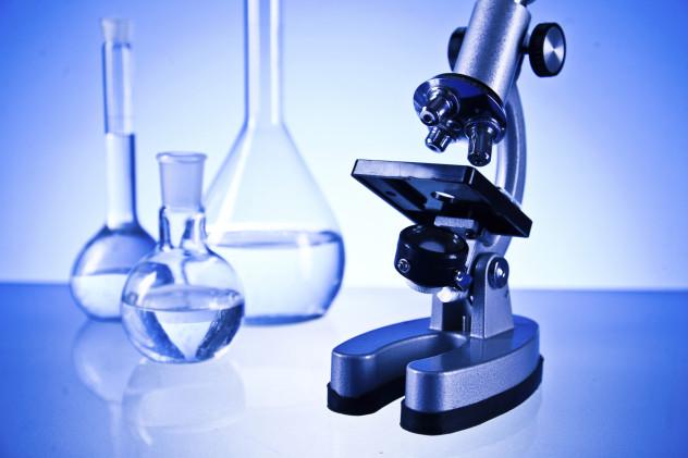 6 microscope
