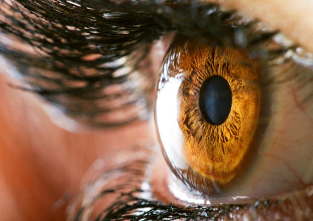 9 Eye