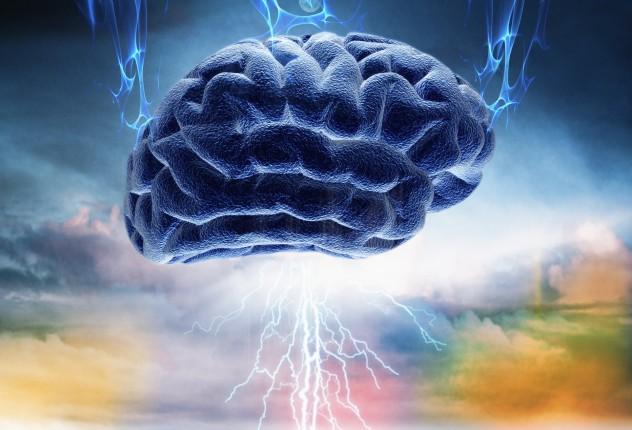 6 brain wave