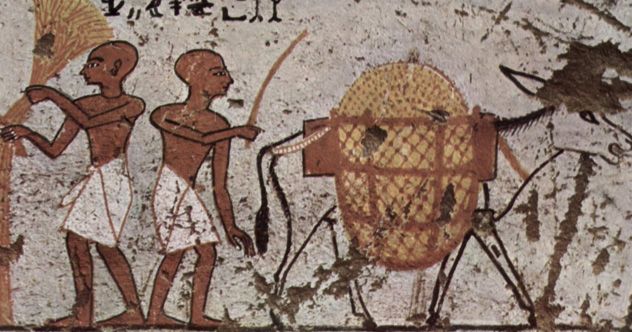 10 Surprising Discoveries About Ancient Health Care - Listverse
