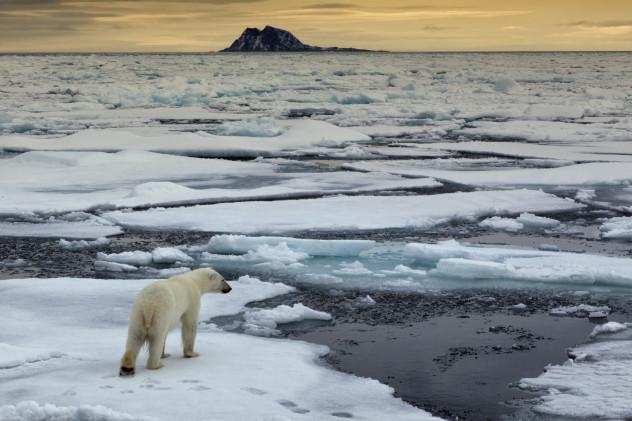 1 global warming