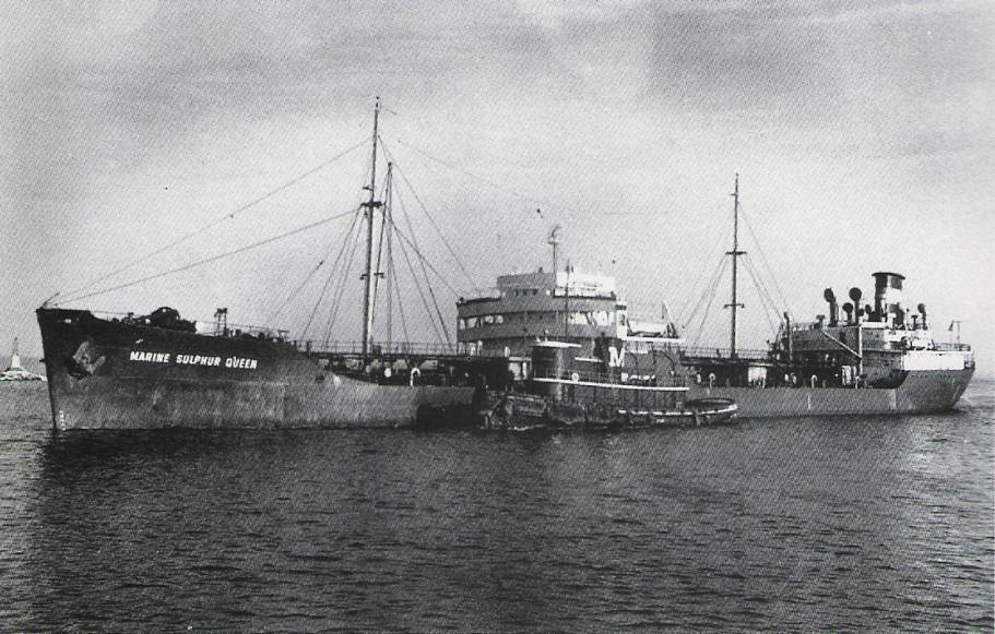 Marine-Sulphur-Queen