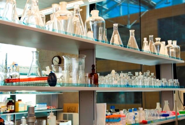 3 lab