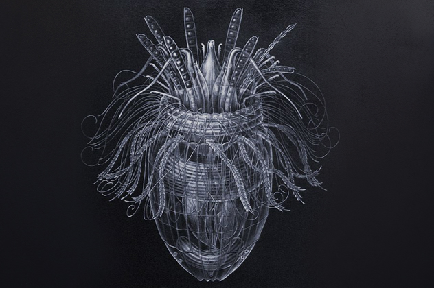 9- bacteria 2