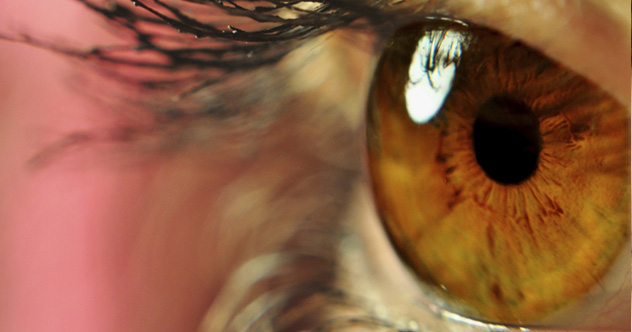 10 Curious Facts Our Eyes Reveal About Our Biology
