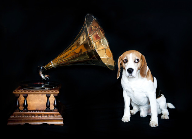 6 phonograph