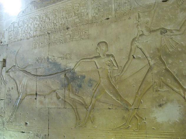 9Amun-her Khepeshef