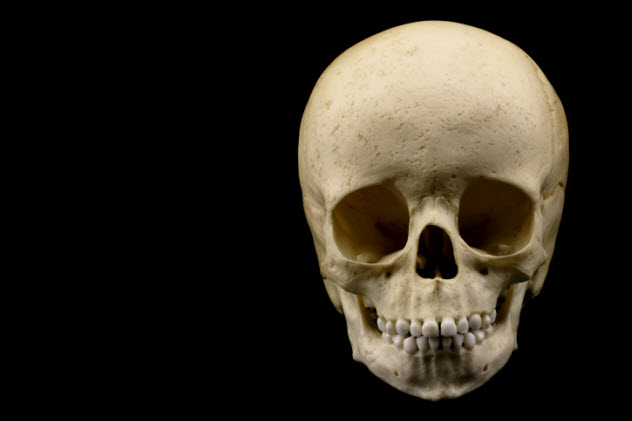2-child-skull-144318494