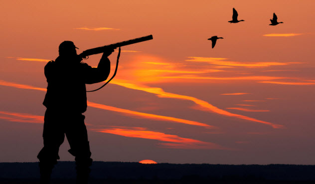 10-hunter-468551946