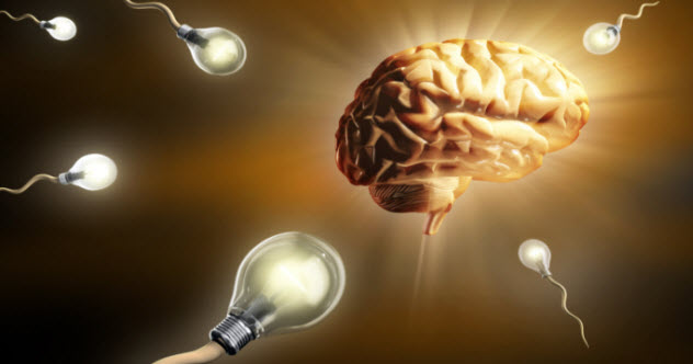 7-brain-lightbulb-101511232