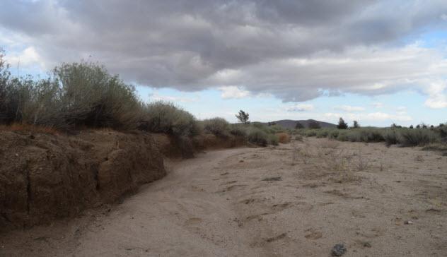 3-mojave-desert-492005208