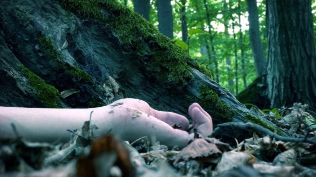 Dead Under Tree