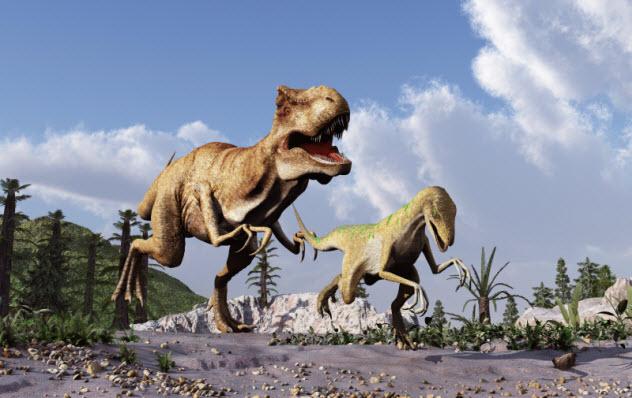 1-dinosaurs_000045055788_Small