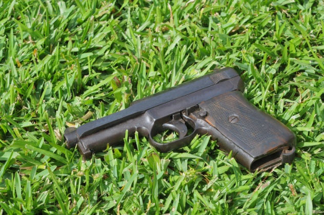 Gun on Grass