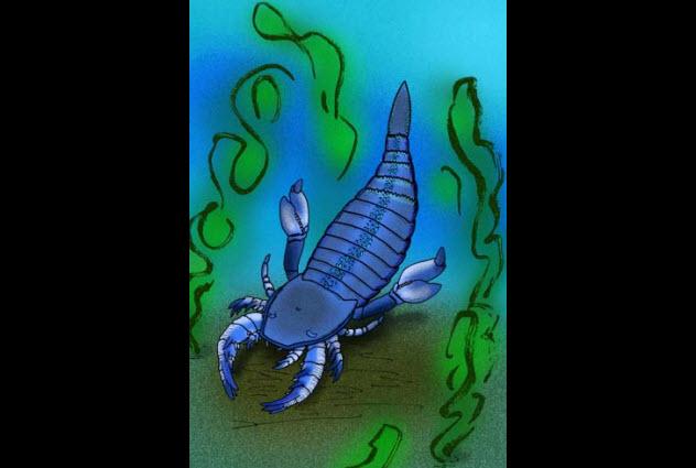 10-sea-scorpion