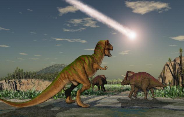 2-extinction_000039120756_Small