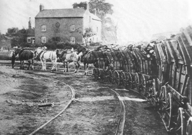 3-horse-train