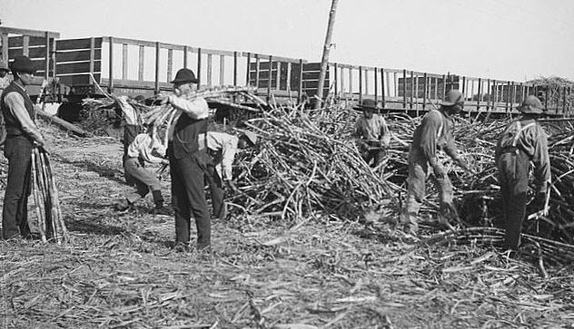 5-thibodaux-sugarcane-workers