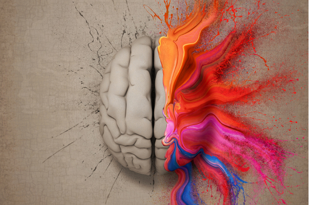 8- brain function 2