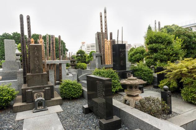 3a-yanaka-cemetery_000058699018_Small