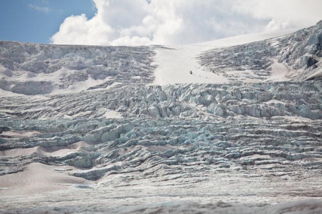 4-ice-age-superbug_000025383662_Small