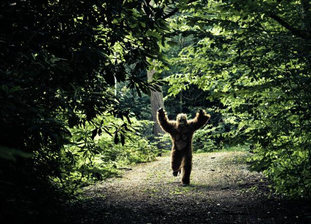 5-bigfoot_000013695075_Small