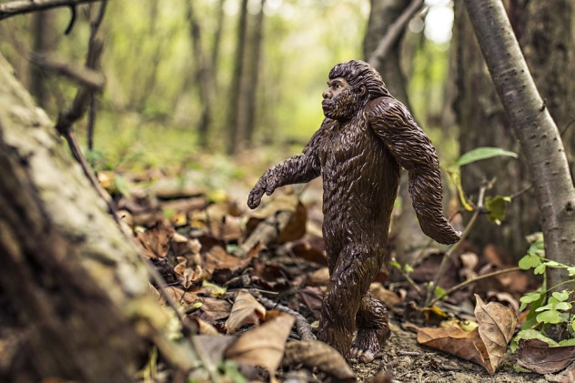 9Washington States Bigfoot Protection Ordinance